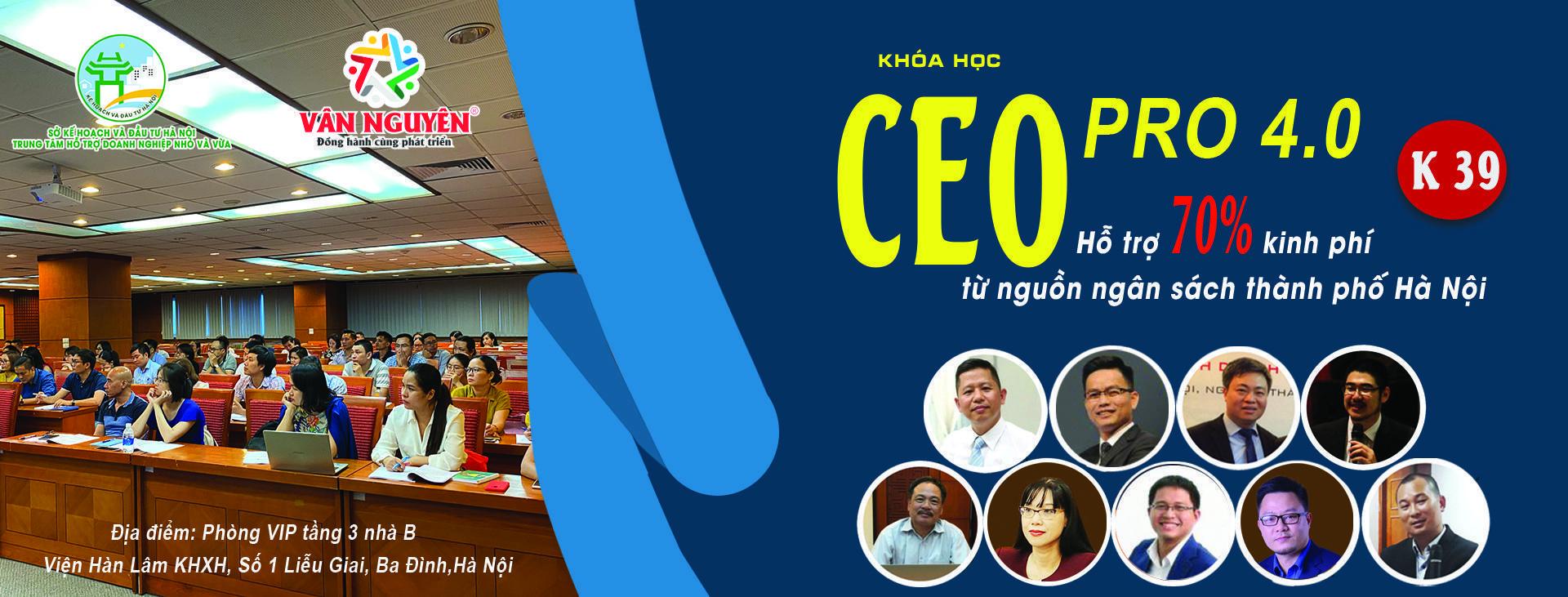 CEO PRO (K39) – Chiến lược tái cơ cấu của doanh nghiệp sau khủng hoảng